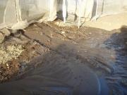 ハウスの灌水チューブ外れて播種床が水没…(涙)