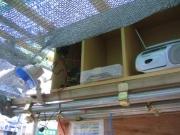 チャージコントローラーとバッテリーの格納場所を確保
