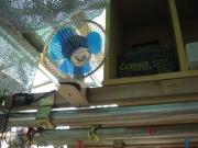 扇風機もとりあえず固定