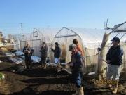 ホウレンソウ部会 圃場視察会(土壌改良資材を使った試験)